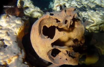 Estudio revela existencia de distintas razas craneales de hasta 13 mil años en Quintana Roo