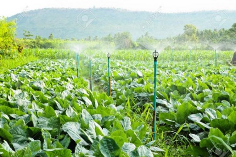 Mal trato de aguas residuales incide en enfermedades crónico degenerativas