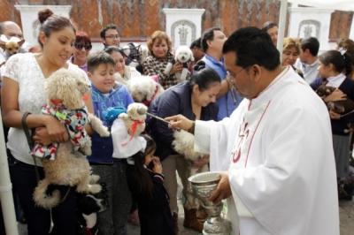 Por celebración de San Antonio Abad, se podrá bendecir a las mascotas este jueves