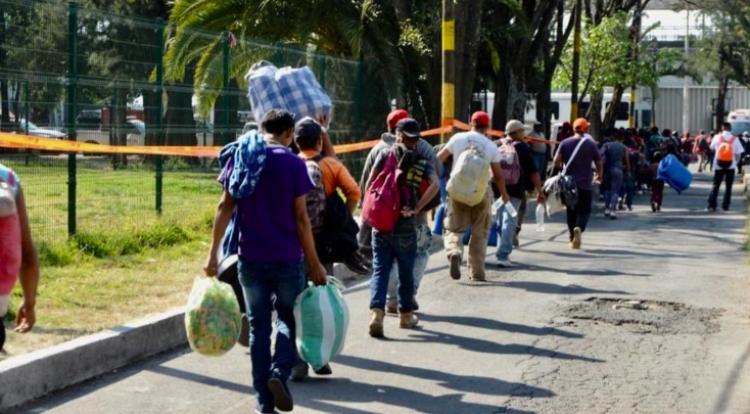 """Gobierno Federal y Tamaulipas continúan en la búsqueda de migrantes """"desaparecidos"""""""