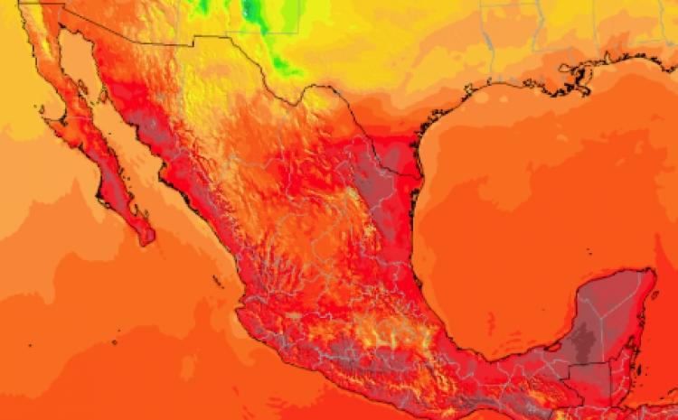 Advierten que temperatura global podría aumentar de 3 a 5 grados