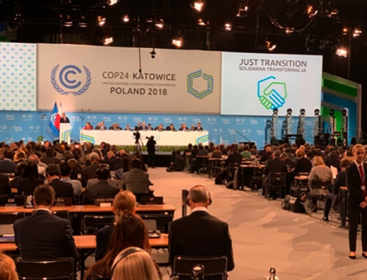 ONU denuncia acoso contra defensores en la COP24