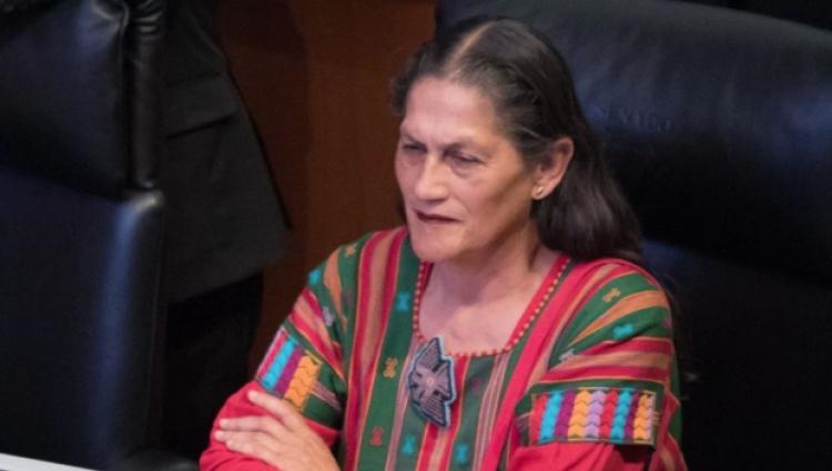 Senadora de Morena compara la marihuana con el clítoris
