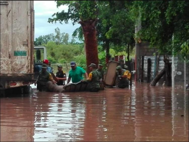 No se registra ningún brote de enfermedades en Sonora: Cofepris