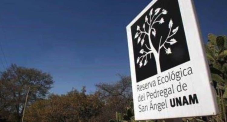 Encuentran cadáver en reserva ecológica de la UNAM