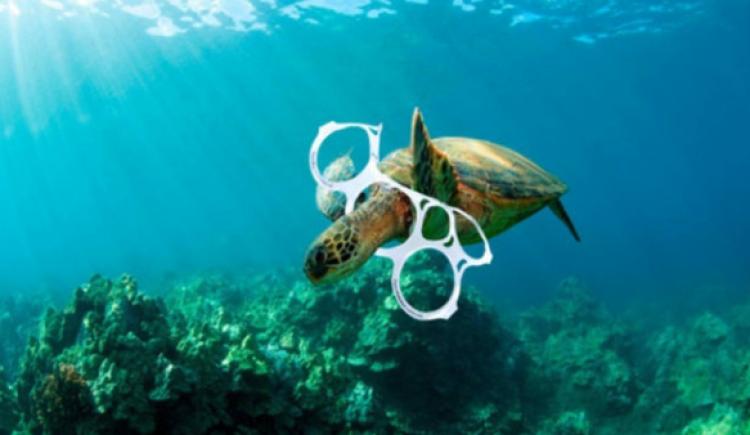 Para el 2050 el mar tendrá más plástico que peces