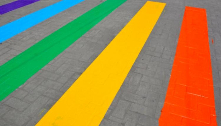 CNDH propone urgencia de luchar contra discriminación de adultos mayores LGBTI