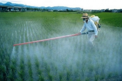 Dependencias de medio ambiente siguen recomendaciones por CNDH por plaguicidas peligrosos