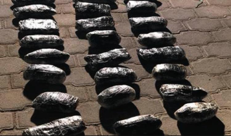Aseguran 14 kilos de droga en tractocamión en Baja California