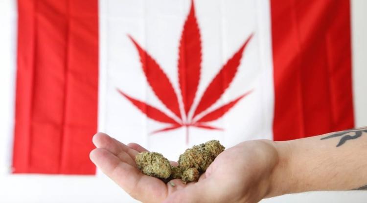 Canadá es el segundo país en legaliza el uso de la marihuana.
