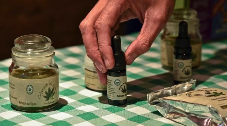 Cofepris orienta y capaica para el uso de productos derivados del cannabis