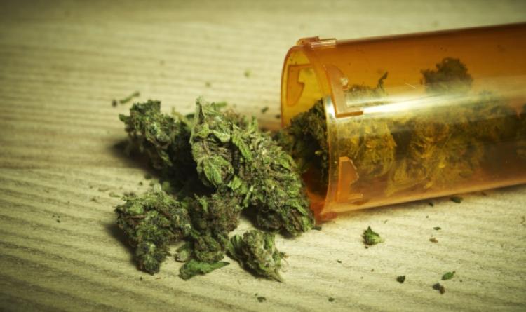 Más de 190 millones de personas probaron al menos una vez la Marihuana en 2016