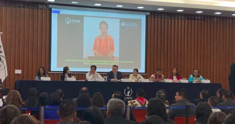 Pueblos indígenas están en riesgo por mega-proyectos de explotación: CNDH